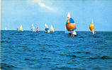 Fireball Sailboat Regatta